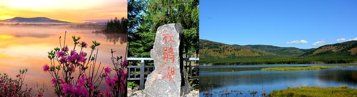 阿尔山国家森林公园杜鹃湖