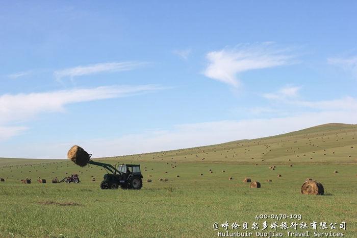 呼伦贝尔草原上的草卷