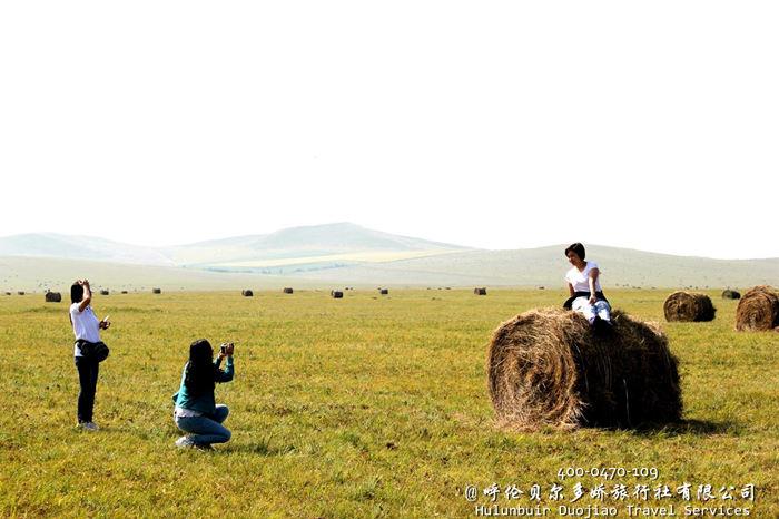 呼伦贝尔秋季大草原
