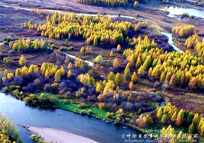 呼伦贝尔室韦秋季照片