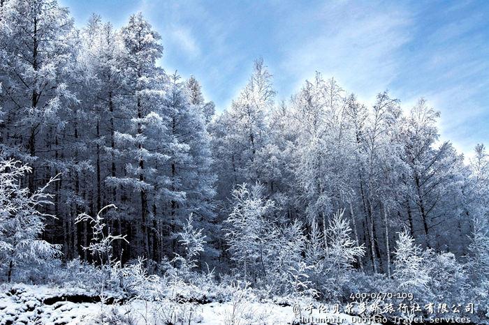 黑龙江漠河县冬季