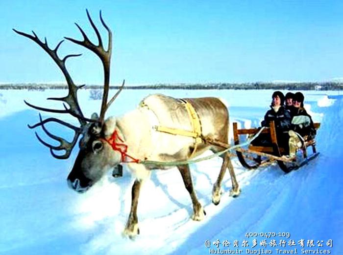 漠河北极村冬季冰雪