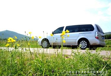 呼伦贝尔大自然赏花景点
