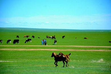 呼伦贝尔草原边境全景5日游